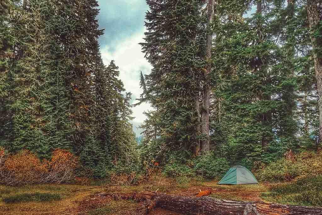 Acampada en el bosque