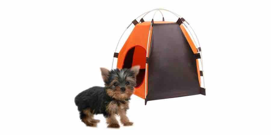 Carpas para perros, dormir en tienda de campaña con perro